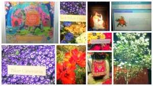 Highlights from The Macy's Flower Show